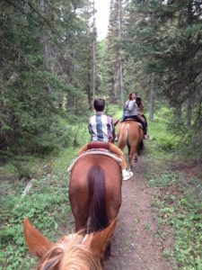 West Yellowstone Horse riding, one of the many things to do and see